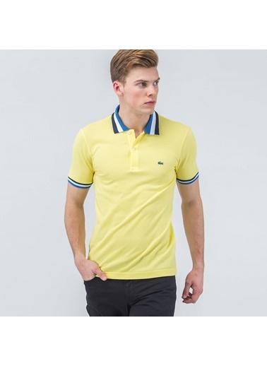 Polo Yaka Tişört-Que